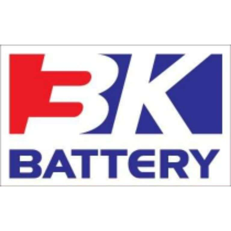 BATTERY WE CARRY
